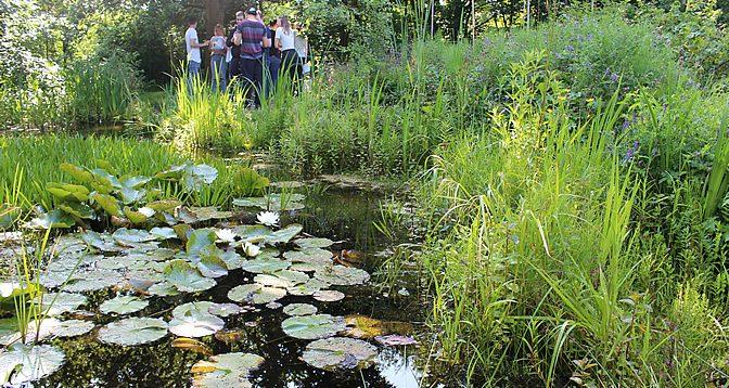 Gewässerökologische Untersuchungen